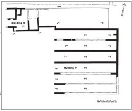 Fig. 1: Kommos: restored plan of Buildings N and P.